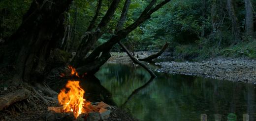 Campfire костер, живые обои wallpaper engine