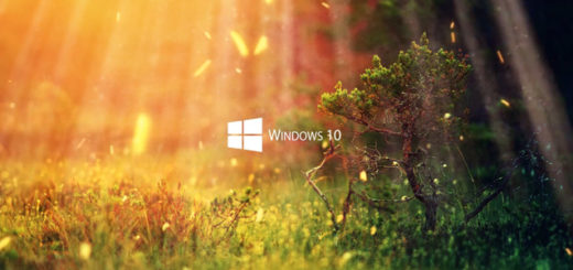 Nature 1080P - Windows 10 Series