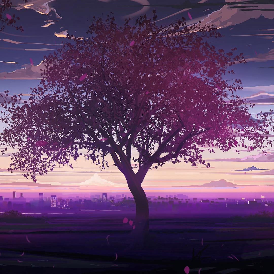 Crimson Tree,Toward Evening——Love,Money,RockRoll