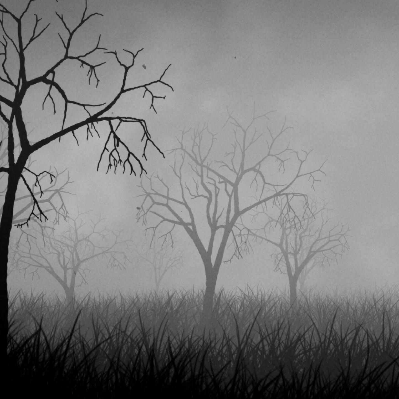 Smokey forest fog animated