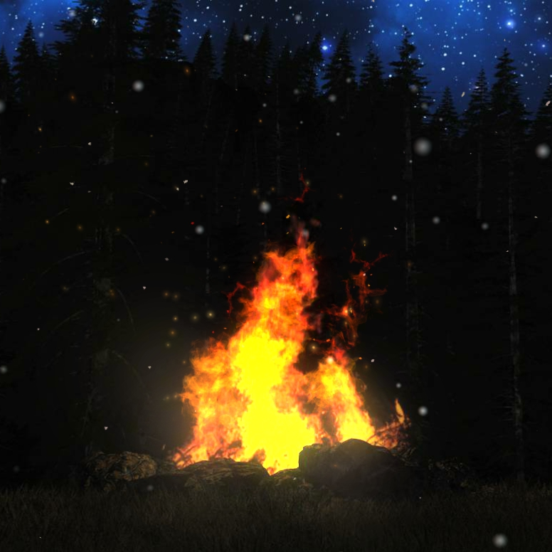 Campfire on a Snowy Day